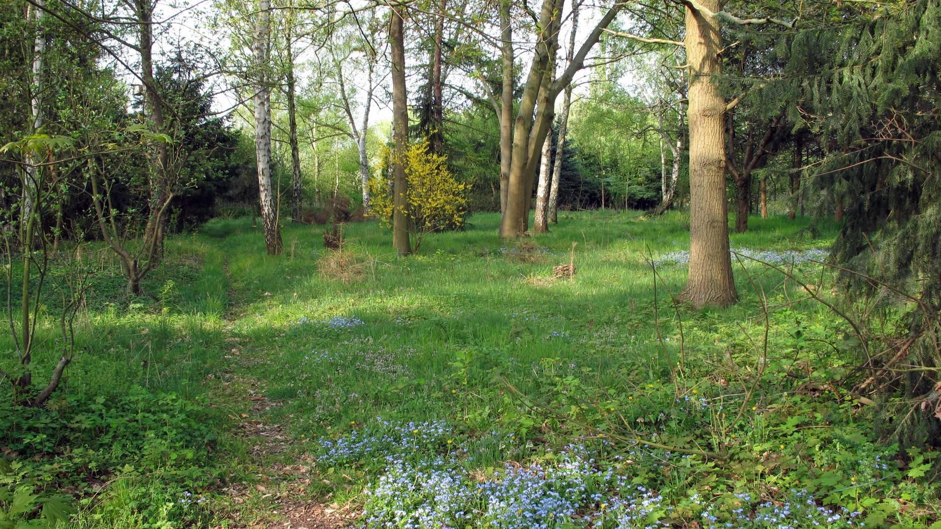 2007.04.17 Altes Grabeland ©Stadt Lehrte