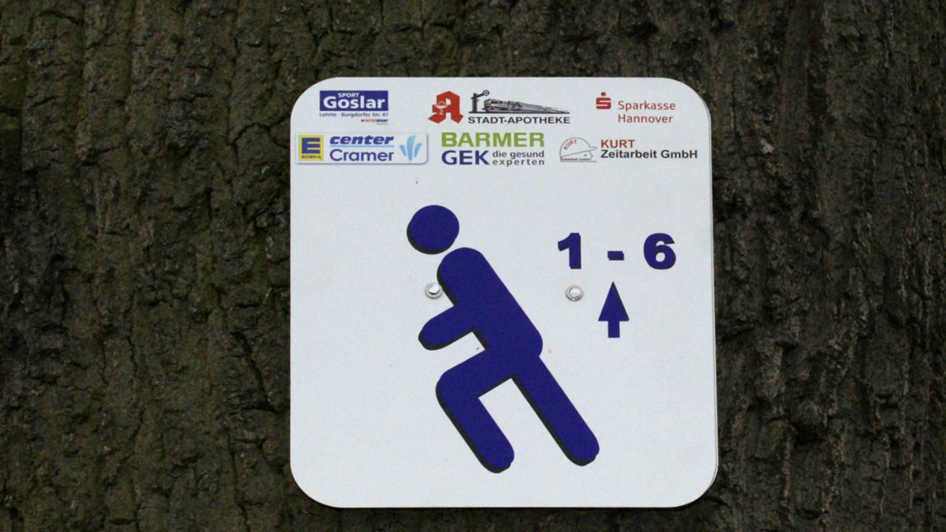 Lauf  und Walkingstrecken 021 ©Stadt Lehrte