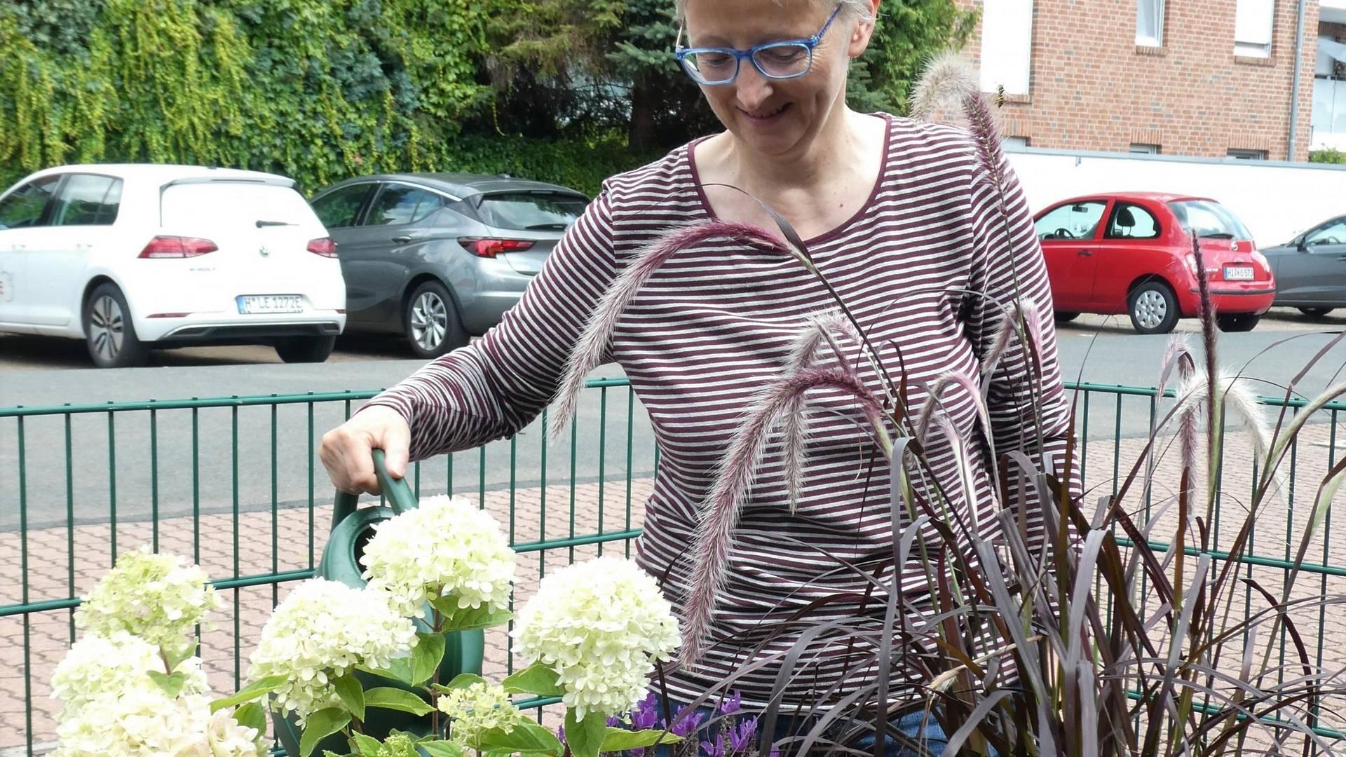 heilpraktikerin frau warnecke gießt die neuanpflanzung ausschnitt