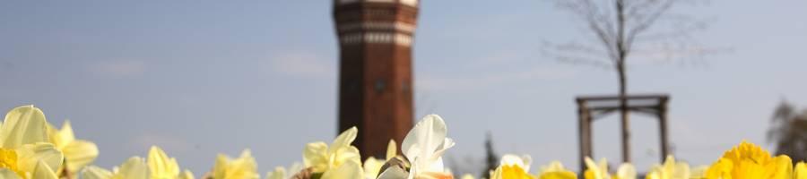 Stadtpark Lehrte Am Wasserturm